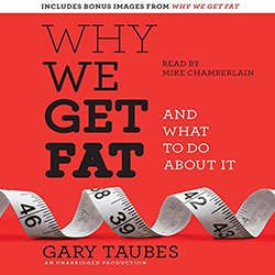 Why We Get Fat Audiobook